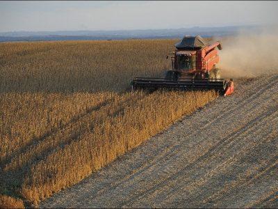 Brasil está atrás de maiores concorrentes agrícolas no uso de tecnologias emergentes