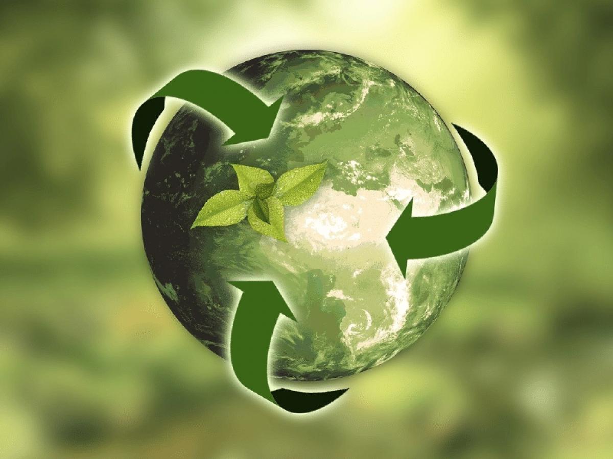 RecycleGo e DeepDive vão desenvolver solução em blockchain para reciclagem