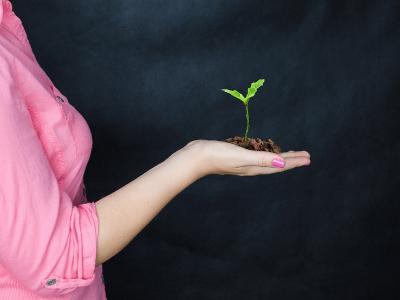 Alterbank busca R$ 2 milhões em investimento semente